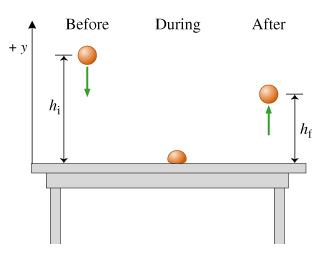 Physics homework help egg drop