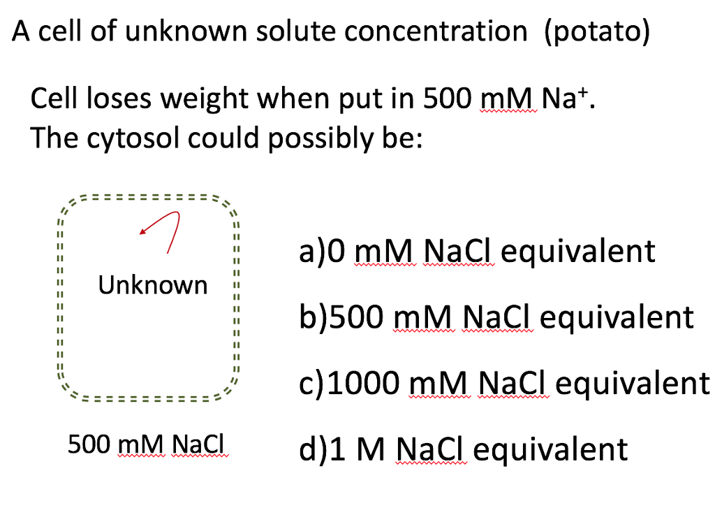 finding the concentration of a potato cell The results show that the higher the concentration of sucrose the potatoes were placed in, the more hypotonic the potato becomes the tonicity of a cell is the difference in osmotic concentrations between the cell and another solution or cell.