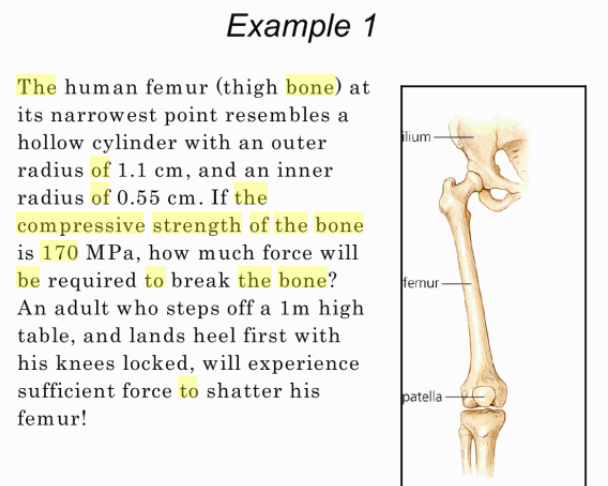 Solved: The Human Thigh Bone, The Femur, At Its Narrowest ...