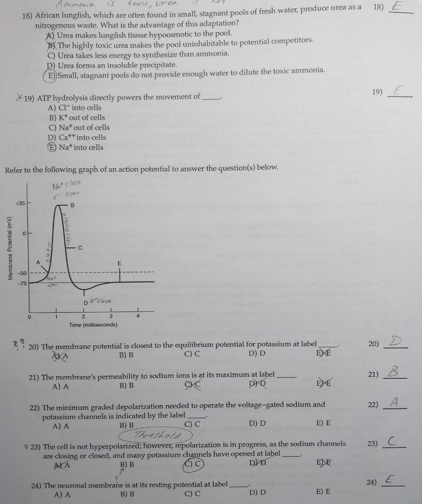 biology study guide answers