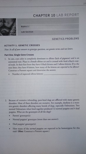 Solved: 175 CHAPTER 10 LAB REPORT Namels) GENETICS PROBLEM