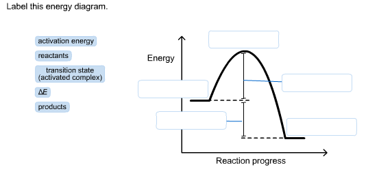 Solved Label This Energy Diagram Activation Energy React