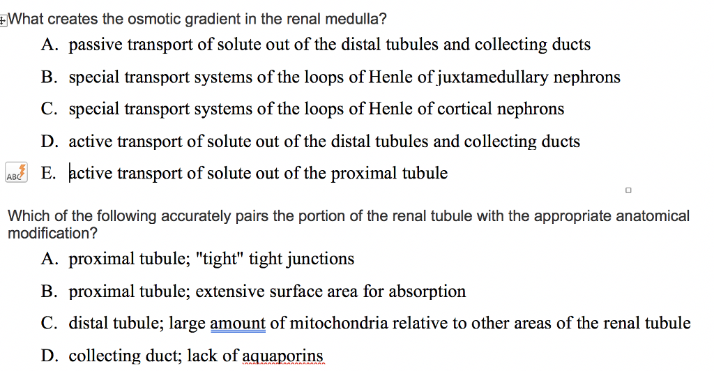 Solved What Creates The Osmotic Gradient In The Renal Med