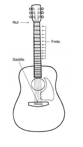 Solved Problem 6 While Playing Guitar You Notice That The