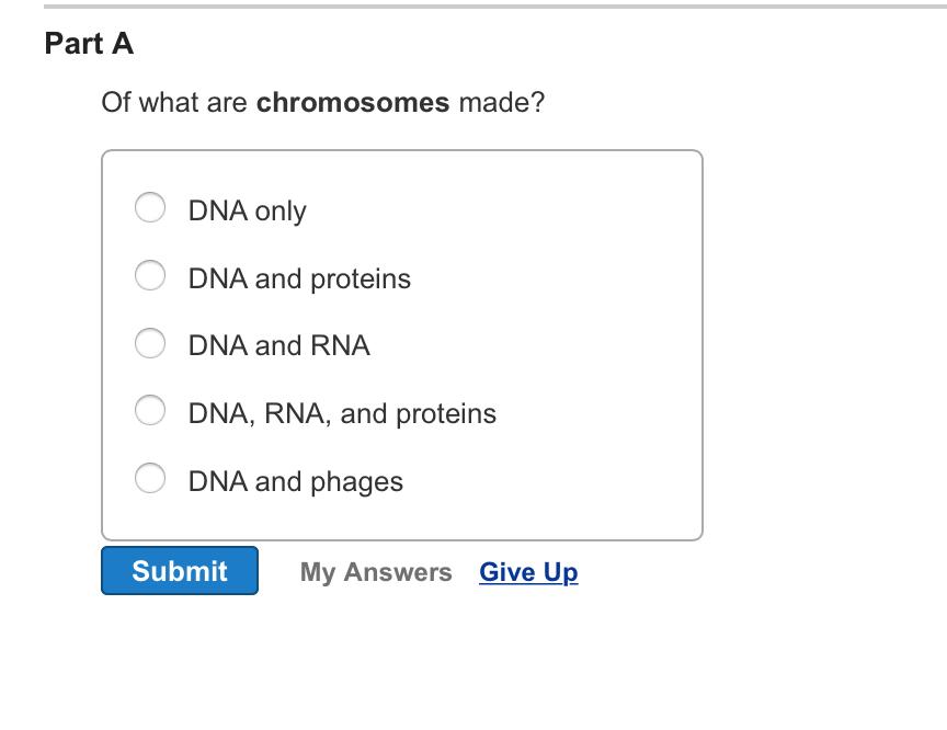 Ungewöhnlich DNA RNA Und Proteine Arbeitsblatt Bilder - Super Lehrer ...