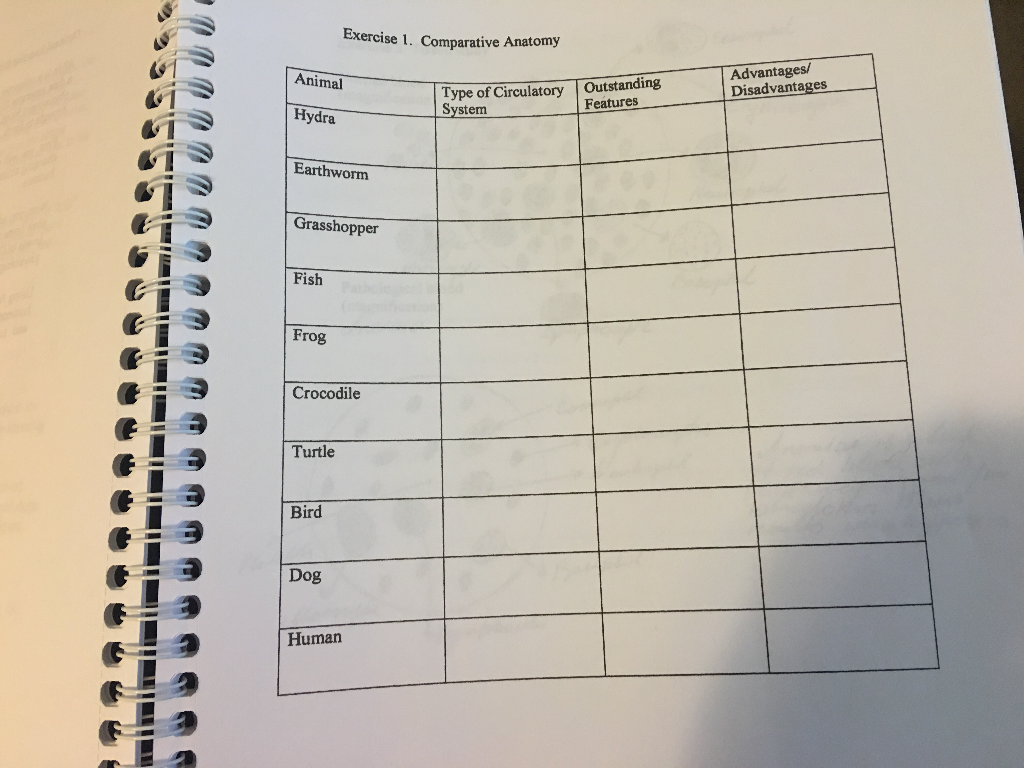Solved: Construct A Table Comparing And Contrasting The Pa ...