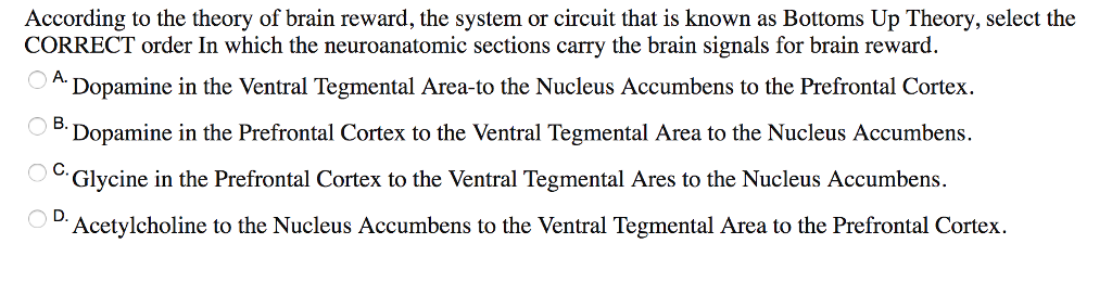 according to the theory of brain reward the system or circuit that is known as