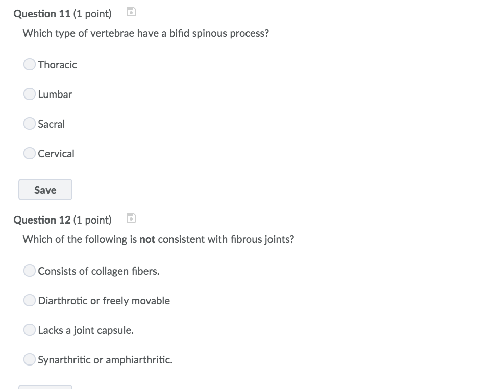 Solved Question 11 1 Point Which Type Of Vertebrae Have