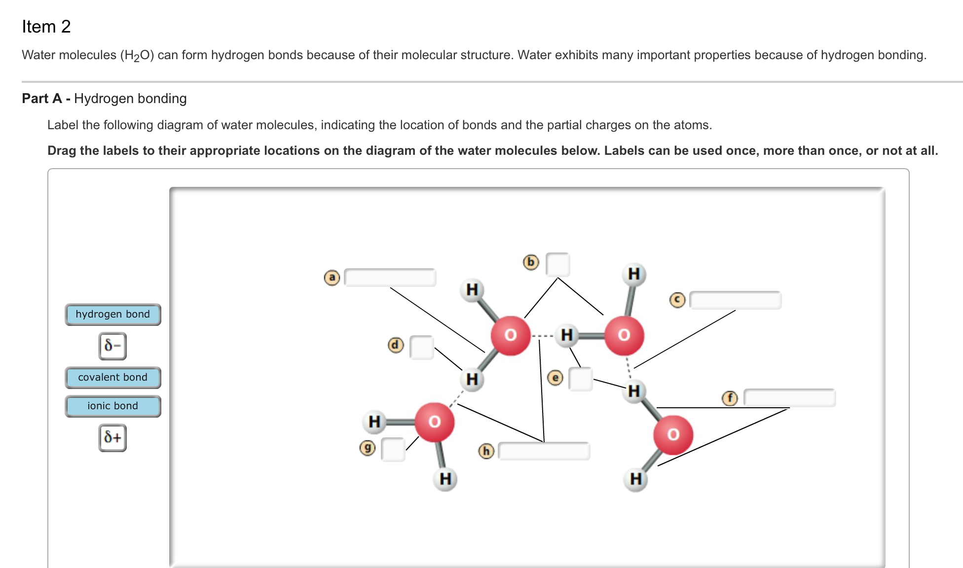 Labeled diagram of hydrogen auto wiring diagram today solved water molecules h 2o can form hydrogen bonds bec rh chegg com nitrogen diagram hydrogen atom diagram ccuart Images