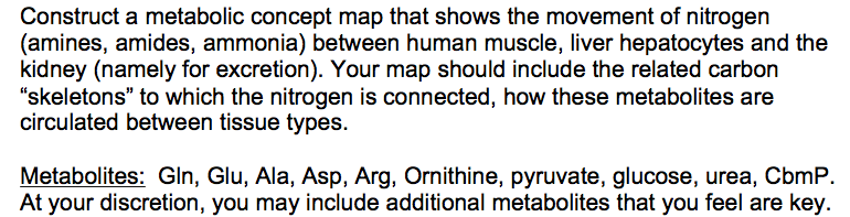 Human Tissue Concept Map.Solved Construct A Metabolic Concept Map That Shows The M