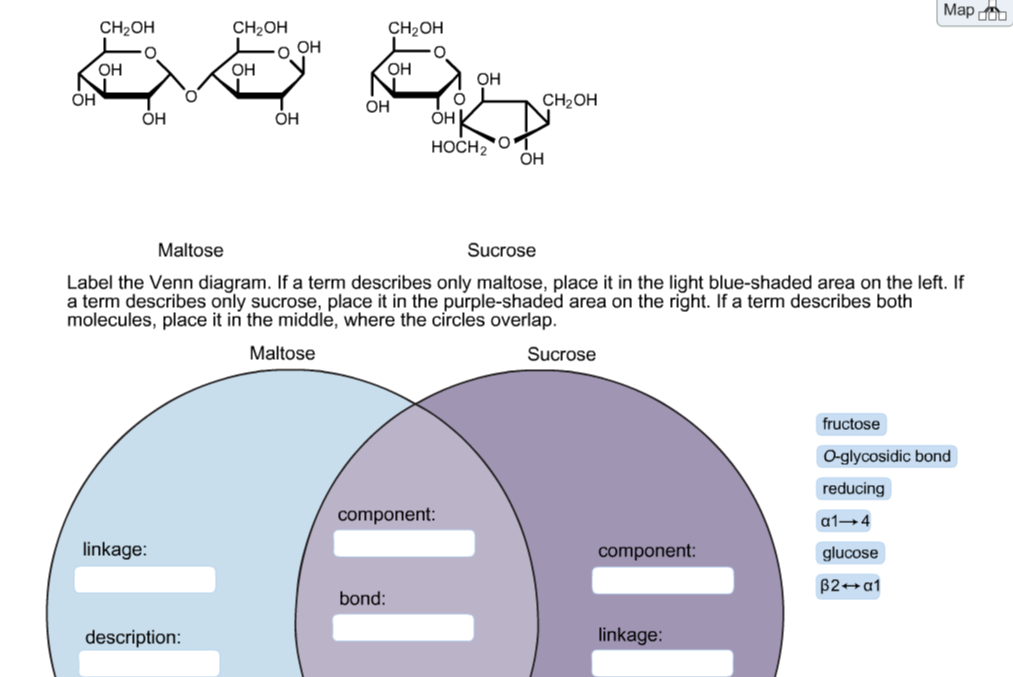 Solved Label The Venn Diagram If A Term Describes Only M