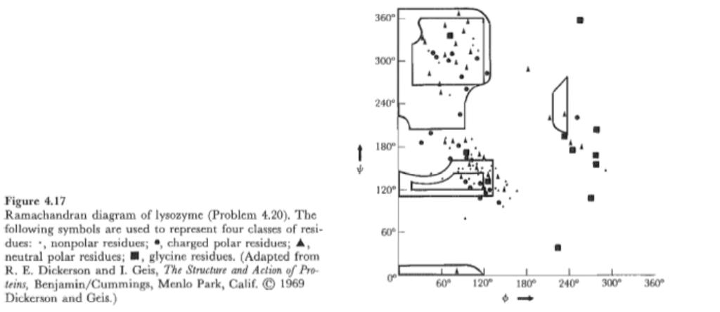 Examine The Ramachandran Diagram Of The Peptide Bo Chegg