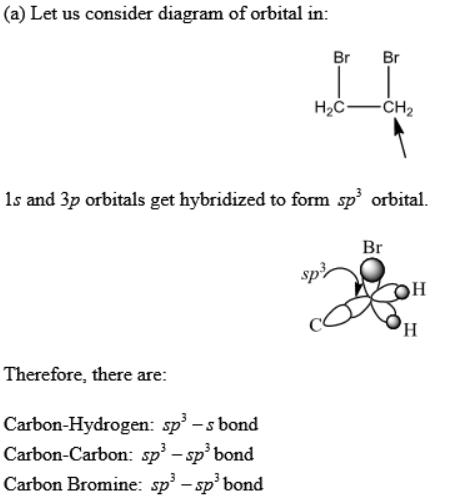 Solved Could Someone Explain Hybridization I Dont Under