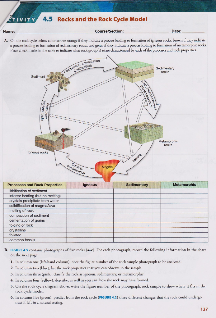 Solved Tivity 45 Rocks And The Rock Cycle Model Name Co