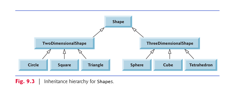 Solved  10 13  Project  Shape Hierarchy  Implement The Sha