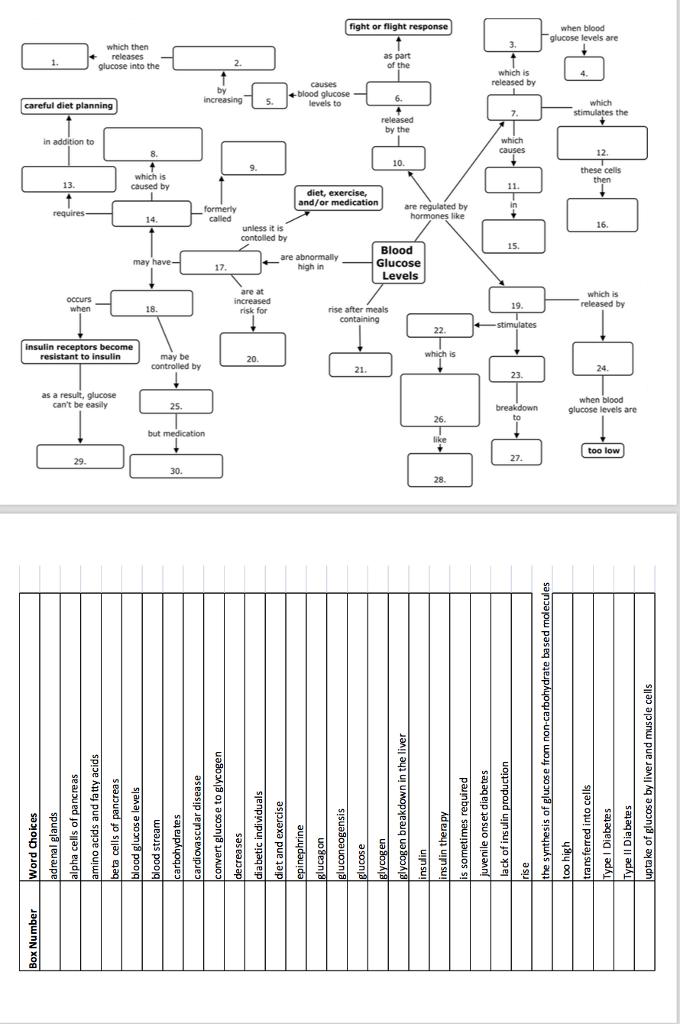 Solved: Blood Glucose Regulation Concept Map Activity You ...