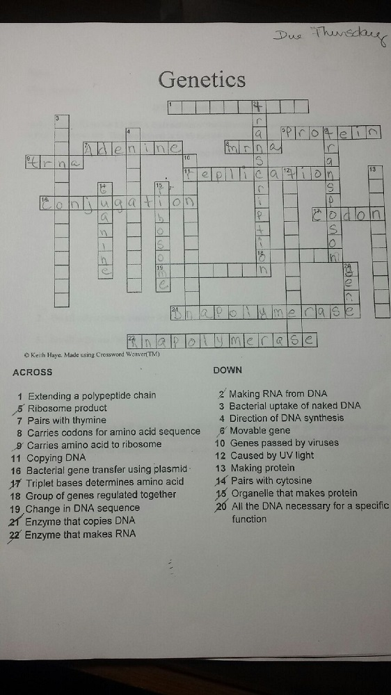 Introduction And Microscope Crossword Puzzle - Micropedia