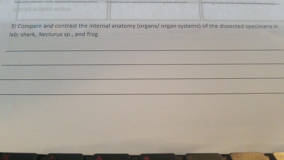 Solved 3 Compare And Contrast The Internal Anatomy Orga