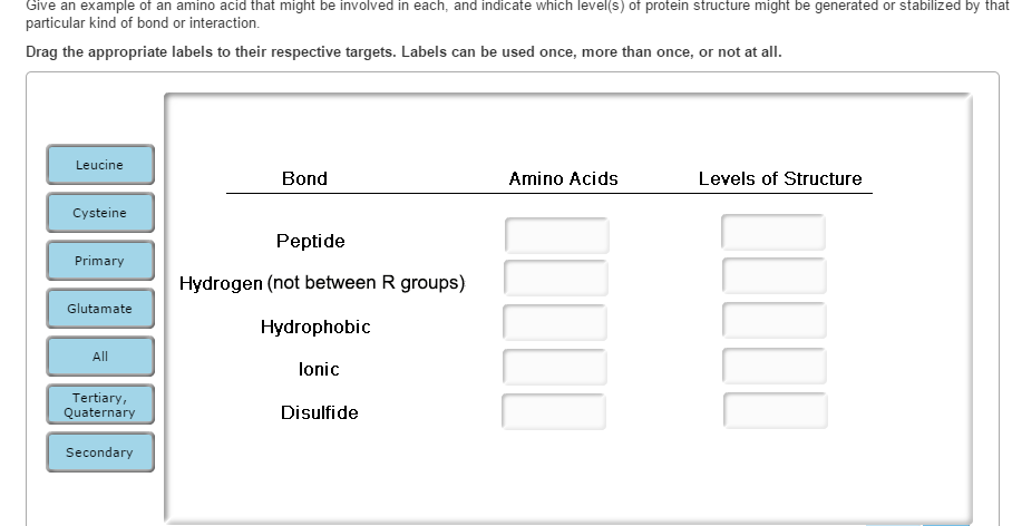 Solved Give An Example Of An Amino Acid That Might Be Inv