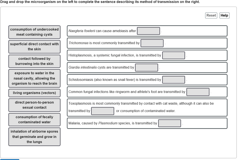 explain how infective agents can be transmitted to a person In medicine, public health, and biology, transmission is the passing of a pathogen causing communicable disease from an infected host individual or group to a particular individual or group, regardless of whether the other individual was previously infected.
