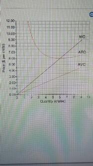 Solved: Lauren Grows Grapes  Her Average Variable Cost (AV
