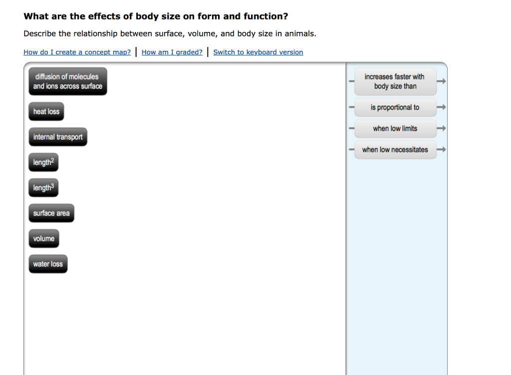 Solved: What Are The Effects Of Body Size On Form And Func