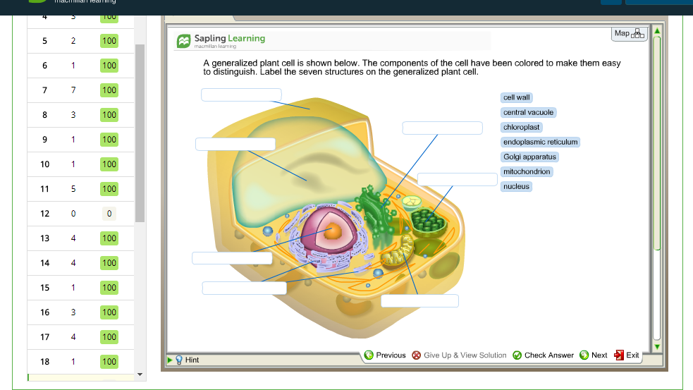 Solved a generalized plant cell is shown below the compo map sapling learning a generalized plant cell is shown below the components of the cell ccuart Image collections