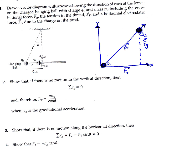 Solved Draw A Vector Diagram With Arrows Showing The Dire