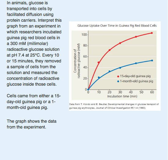 what effect do you think increasing the number of protein carriers will have on the glucose transpor Predict question 1: what effect do you think increasing the number of protein carriers will have on the glucose transport rate predict question 2: what effect do you think adding na+ cl- will have on the glucose transport rate.