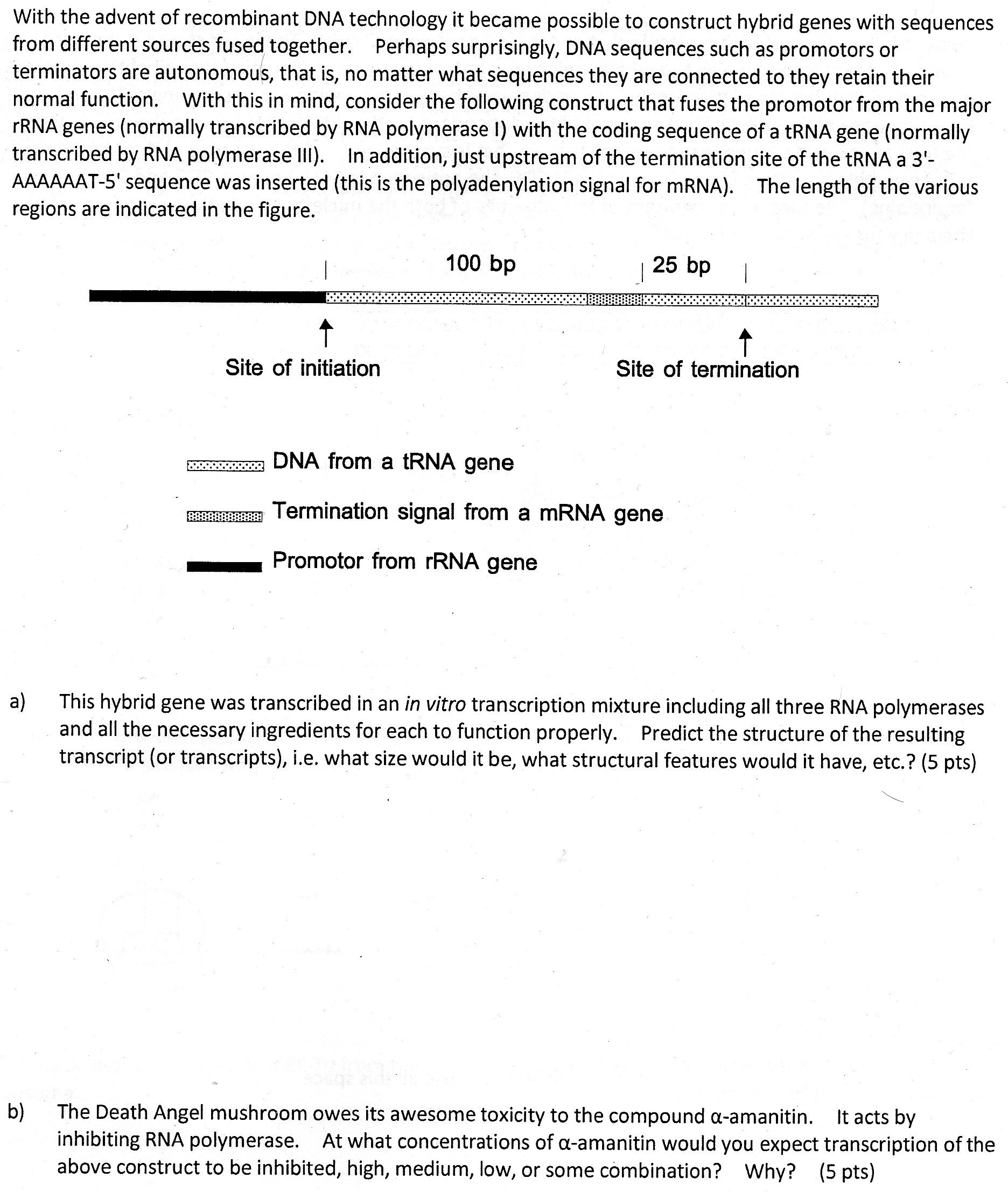 Uncategorized Dna Technology Worksheet biology archive march 04 2015 chegg com with the advent of recombinant dna technology t b