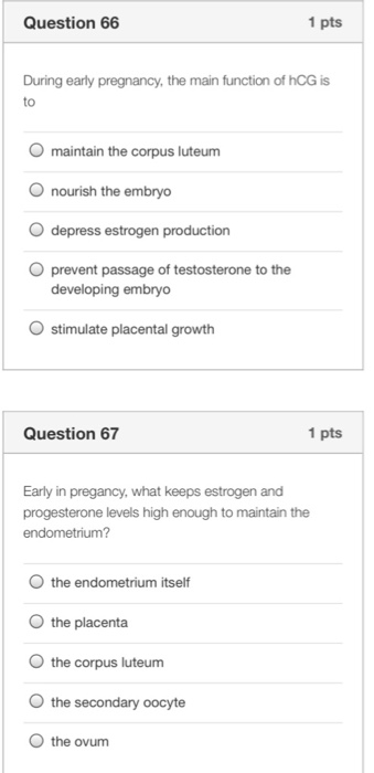 Solved: Question 66 1 Pts During Early Pregnancy, The Main