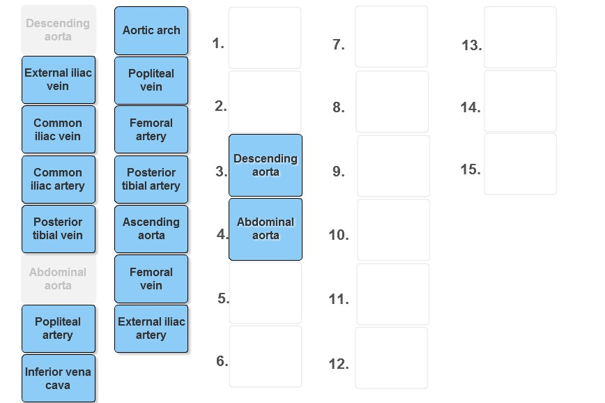 Solved Place The Following Vessels In The Order Through W
