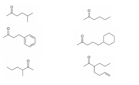 solved starting iwth ethyl acetoacetate how would you pr