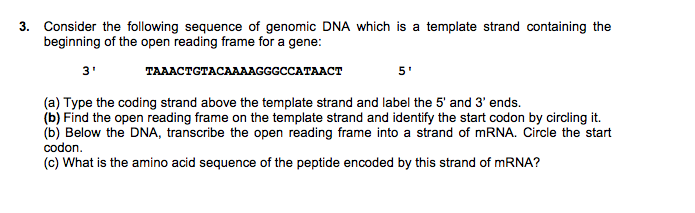 Solved Consider The Following Sequence Of Genomic Dna Whi