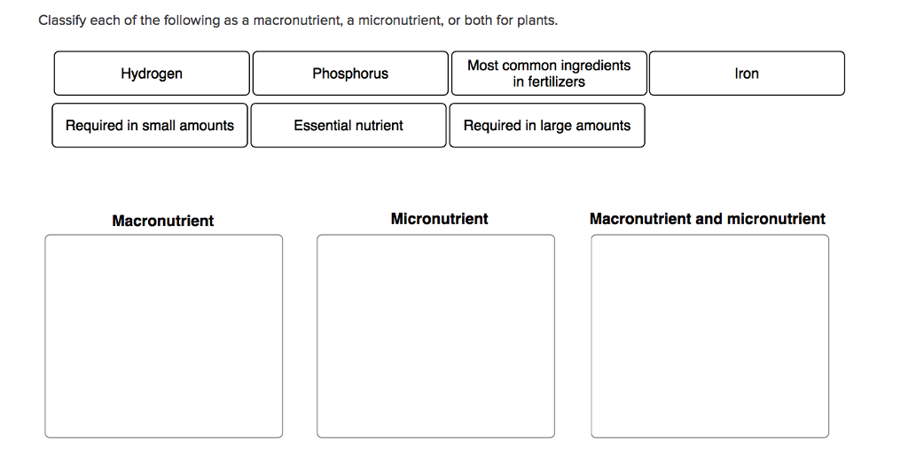 Solved Classify Each Of The Following As A Macronutrient Chegg Com