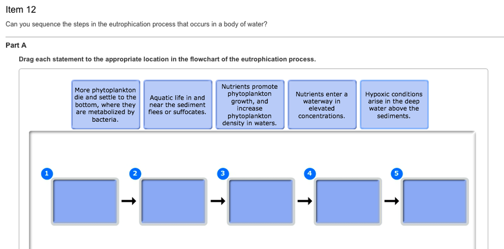 Solved Can You Sequence The Steps In The Eutrophication P