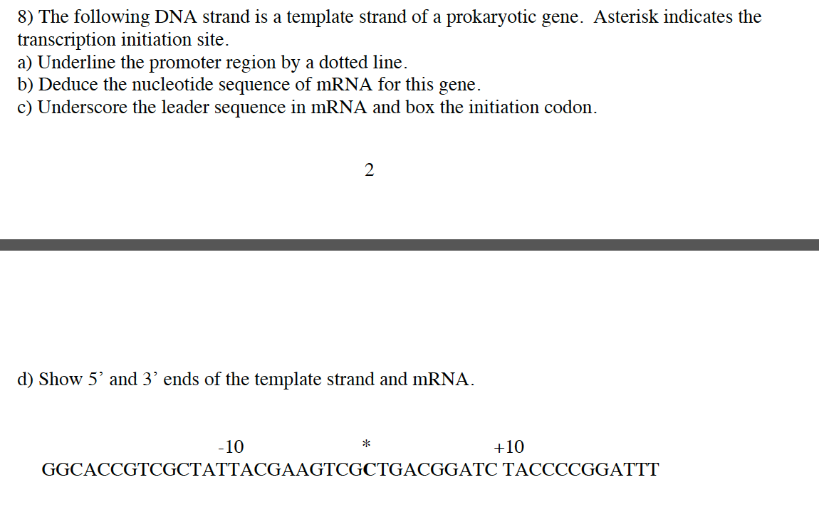 Solved 8 the following dna strand is a template strand o image for 8 the following dna strand is a template strand of a prokaryotic gene maxwellsz