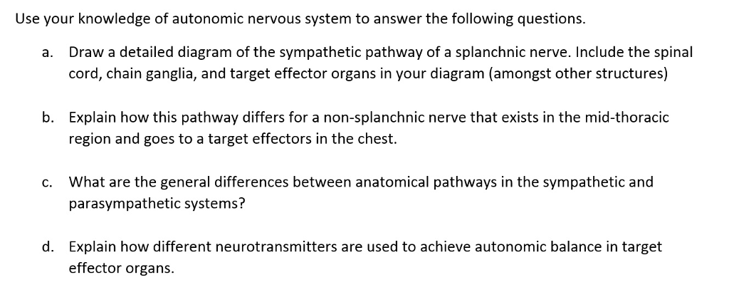 Solved: Use Your Knowledge Of Autonomic Nervous System To ...