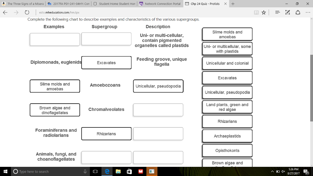 Solved Complete The Following Chart To Describe Examples