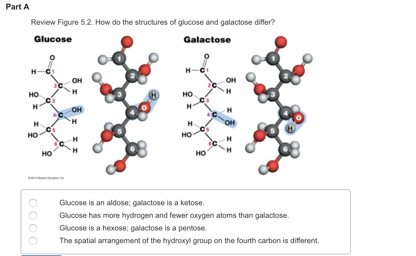 the fermentation process of glycine water sucrose galactose and glucose as induced by yeast Three common sugars—glucose, galactose, and fructose, share the same molecular formula: c6h12o6 because of their six carbon atoms, each is a hexose because of their six carbon atoms, each is a hexose.