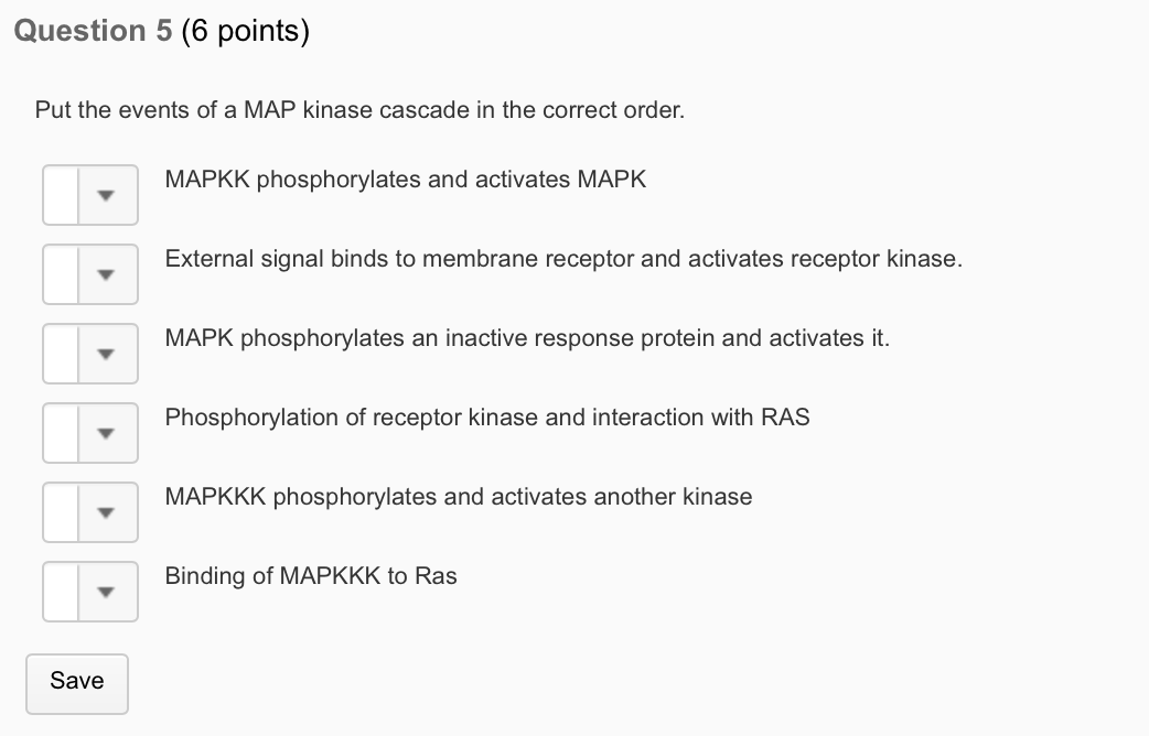 Solved: Question 5 (6 Points) Put The Events Of A MAP Kina ... on cyclic adenosine monophosphate, mapk/erk pathway, apoptosis cascade, c-jun n-terminal kinases, jak-stat signaling pathway, protein kinase, adenylate cyclase, pi3k/akt/mtor pathway, protein kinase c, wnt signaling pathway, signal transduction, protein kinase cascade, tyrosine kinase, cyclin-dependent kinase, notch signaling pathway, amyloid cascade, signal transduction pathway cascade, receptor tyrosine kinase, tgf beta signaling pathway, caspase cascade,