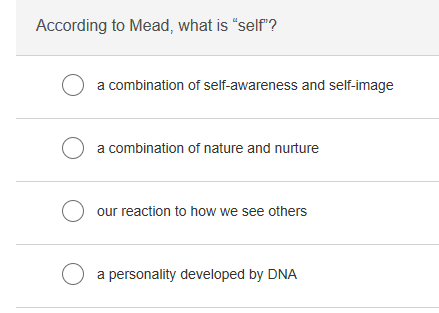 According to Mead, what is self? a combination of self-awareness and self-image a combination of nature and nurture our reaction to how we see others a personality developed by DNA