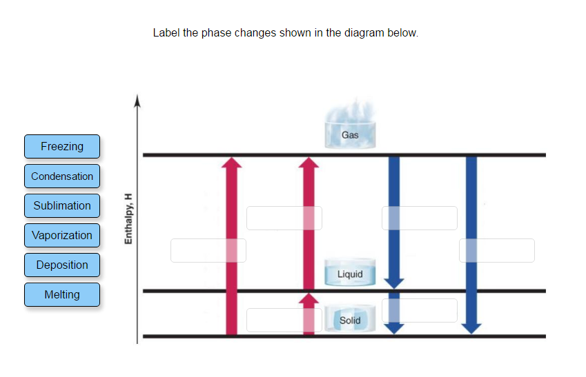 Solved Label The Phase Changes Shown In The Diagram Below
