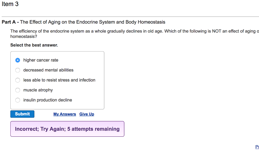 endocrine system answers