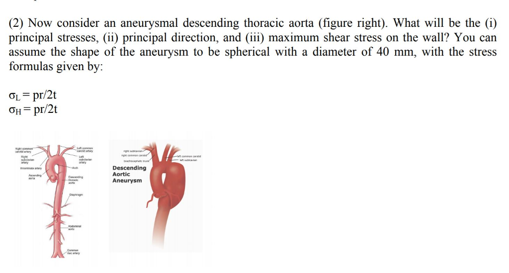 Solved 2 Now Consider An Aneurysmal Descending Thoracic