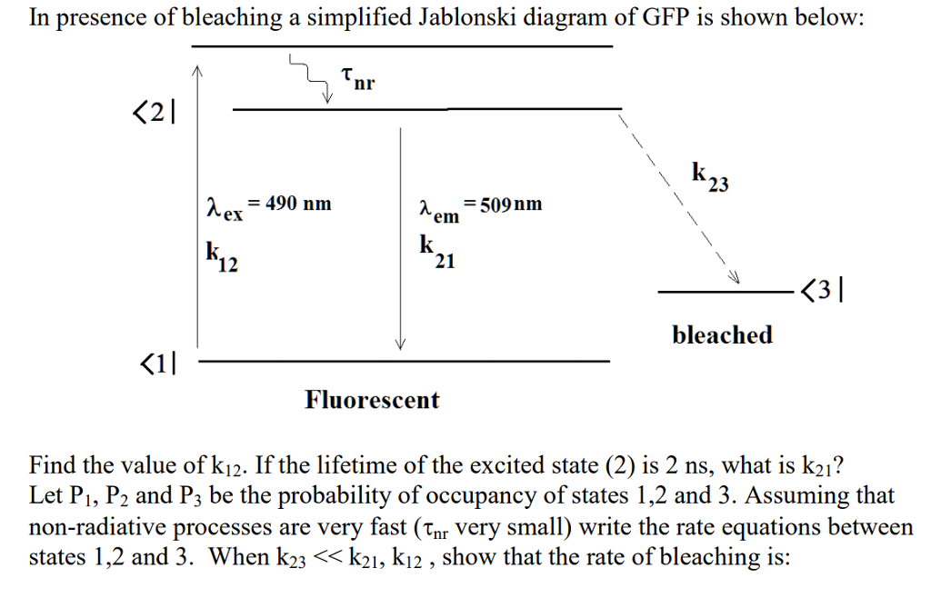 In presence of bleaching a simplified jablonski di chegg in presence of bleaching a simplified jablonski diagram of gfp is shown below nr ccuart Gallery