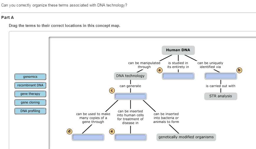 Can You Correctly Place The Labels In This Diagram That Summarizes The Process Of Dna Profiling.Solved Item 5 Can You Correctly Place The Labels In This