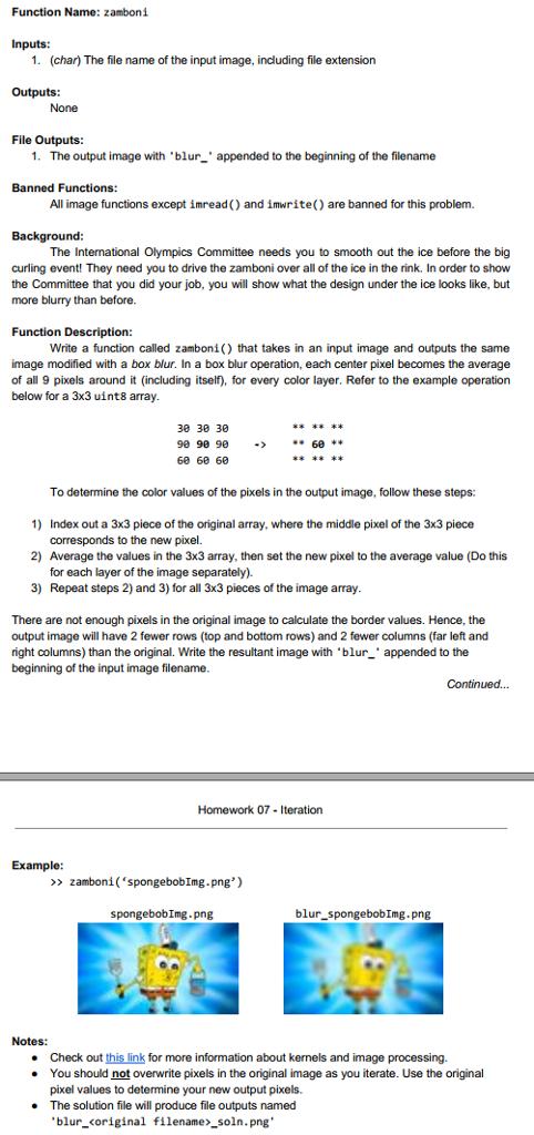 45fe7f75894e Function Name  zamboni Inputs  1. (char) The file name of the input image