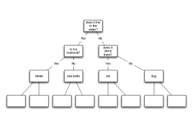Solved: The Computer Has Built The Following Decision Tree