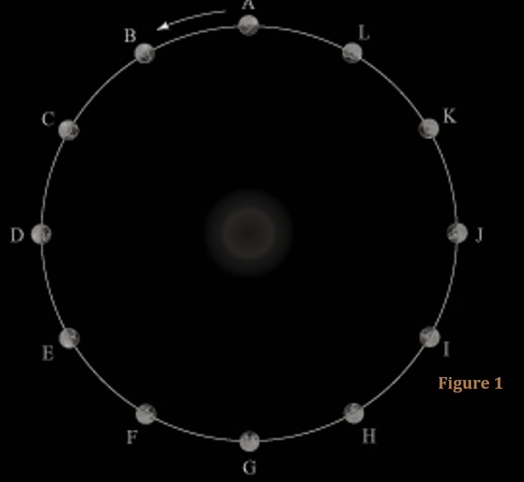 D Figure 1